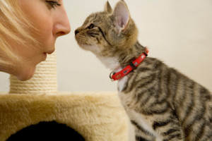 a lady and a cat kissing