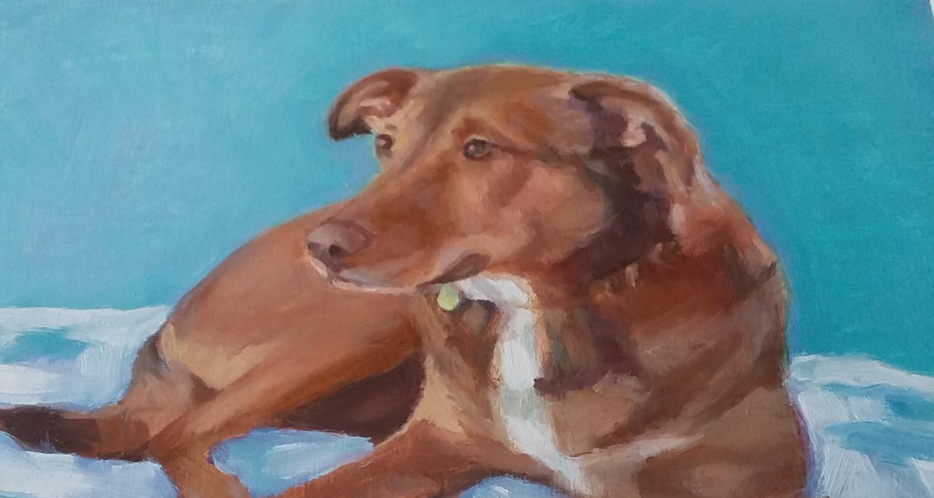 coconut creek dog painting